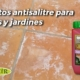 productos antisalitre