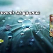 prevenir goteras